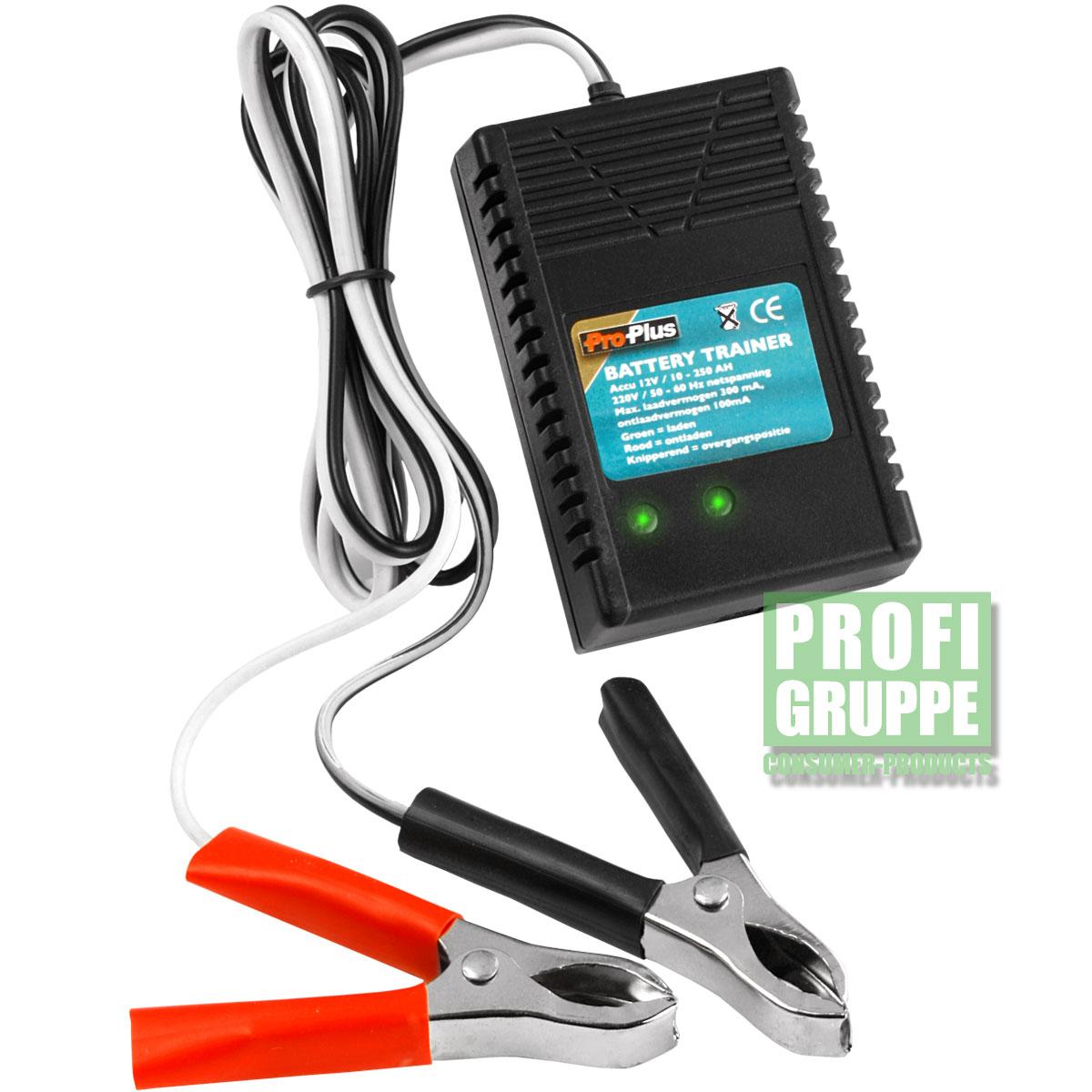 Batterietrainer-Batterie-Trainer-Akku-Jogger-Ladegeraet